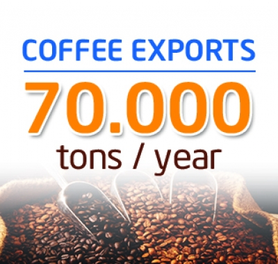 coffee export